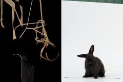bugs_bunny3